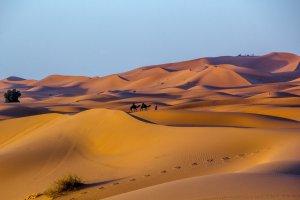 Trekken door de woestijn