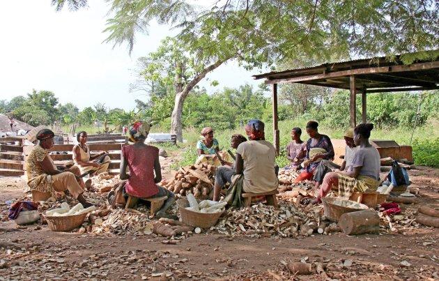 Cassavefabriekje