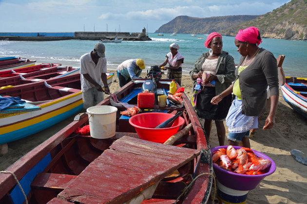 Vishandel bij de boot