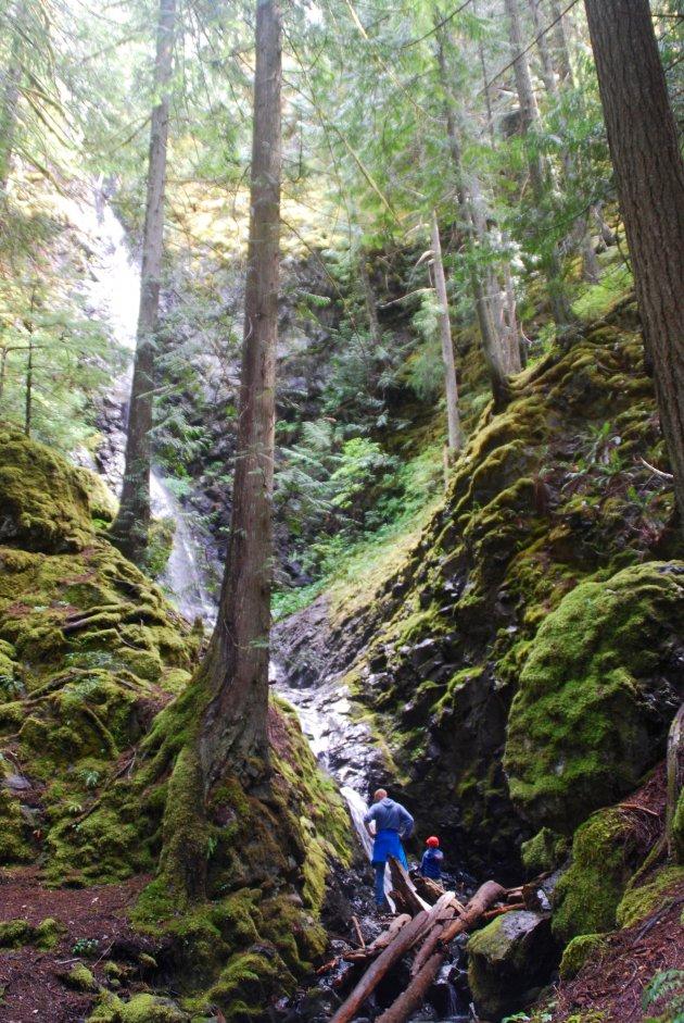 Verborgen waterval op Vancouver Island