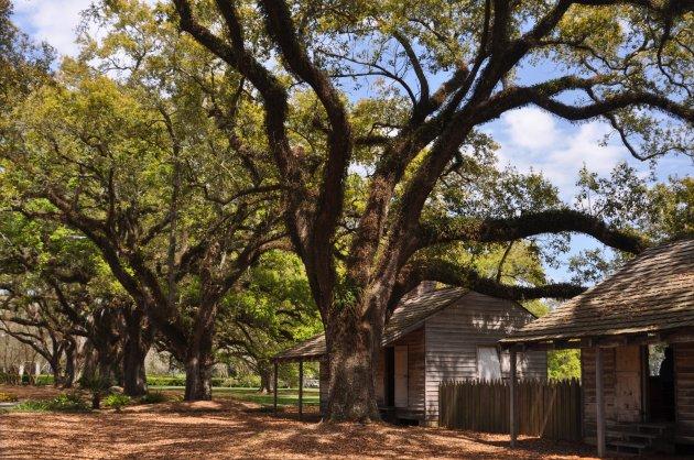 Oak Alley Plantation Slavenhuisjes