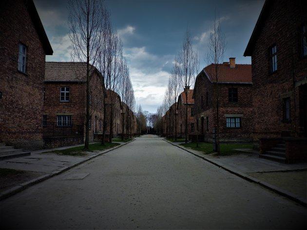 Impressive Auschwitz