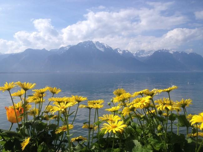 Voorjaar rondom het meer van Genève