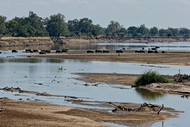 luangwa rivier