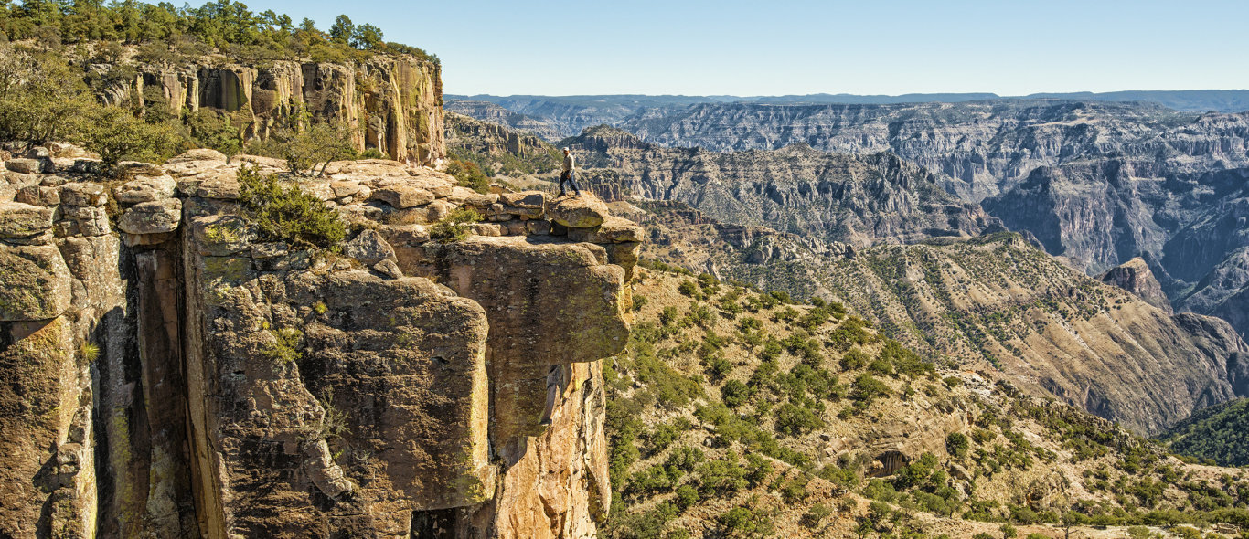 The Copper Canyon image
