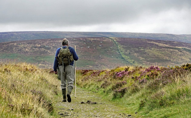Zwerven in Dartmoor