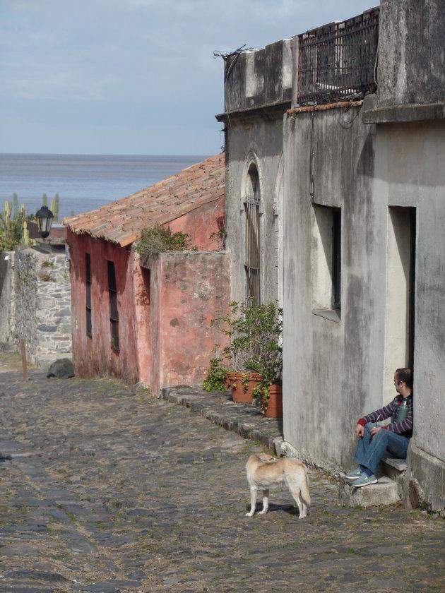Colonia (Uruguay) het land van de Maté