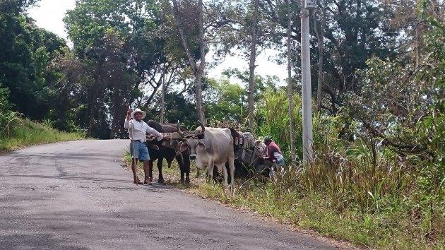 Authentiek vervoer in Costa Rica