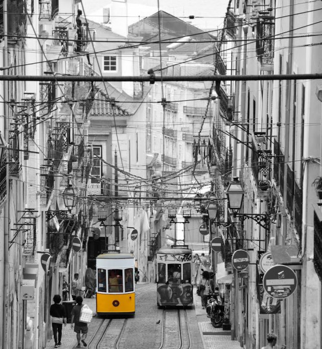 De trams van Lissabon