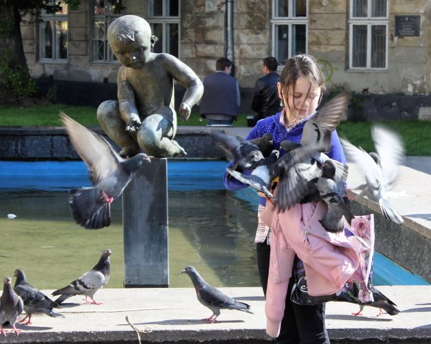 duivenvoeren in Lviv