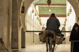 De moskee in Moulay Idriss