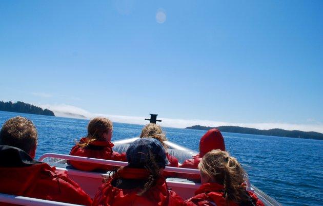 Op Whale Watch Tour