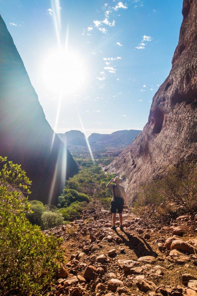 Oog in oog met Kata Tjuta tijdens de Valley of the Winds wandeling