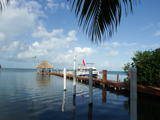 Caye Caulker – Belize – duiktrip
