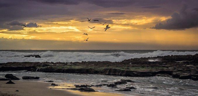 Het mooie strand van Oualidia