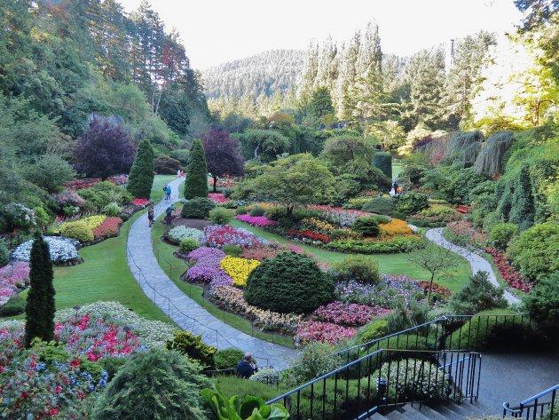 De verzonken tuin