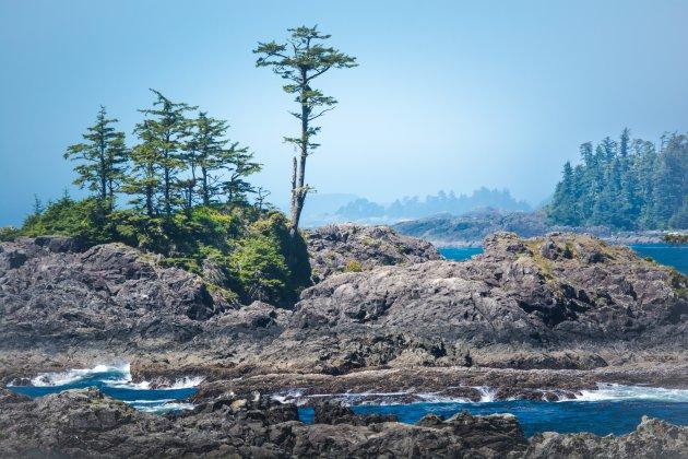 Ongerept Vancouver Island!