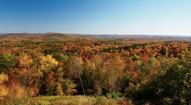 DE herfstkleuren van New England