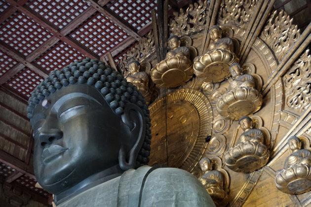 De neusgaten van de grote boeddha