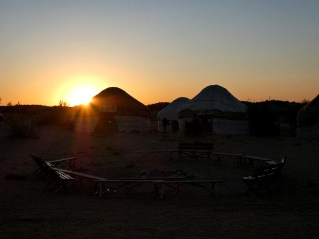 Qizilqum Safari