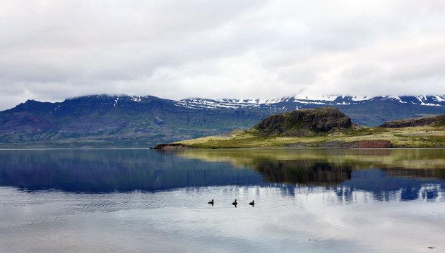 Een vroege ochtend aan de Reydarfjordur