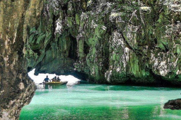 Tropisch zwemparadijs