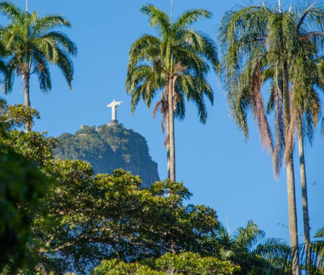 Botanische tuinen Rio