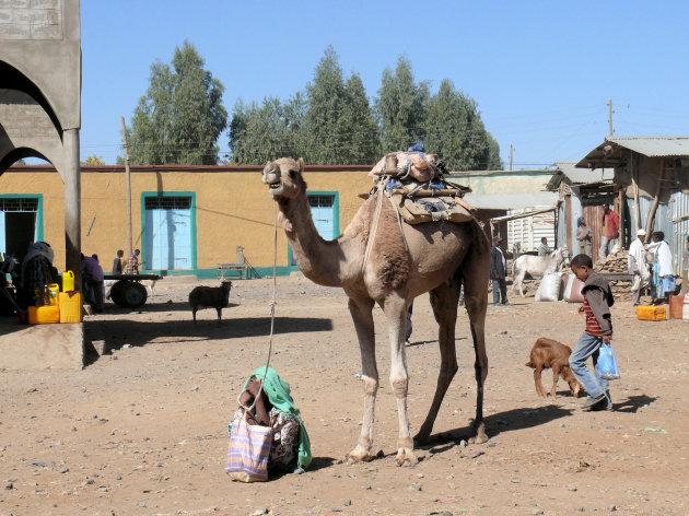 Markt in Aksum