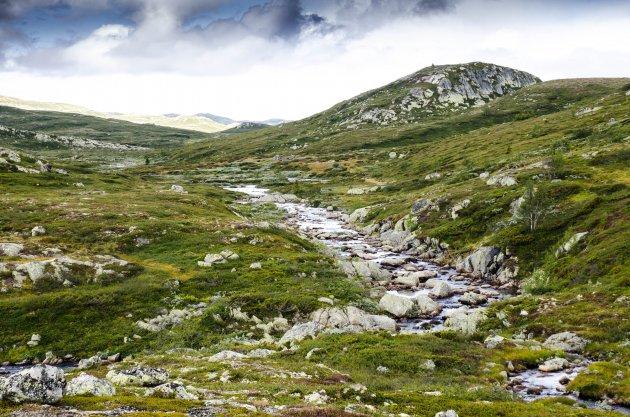 Leegte op de Hardangervidda
