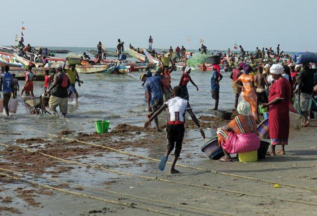 Tanji de vissershaven