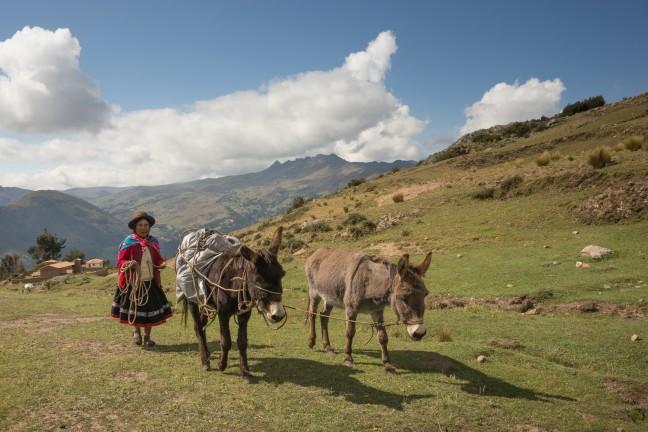 Lares tracking door Peru