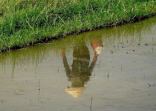 langs de rijstvelden