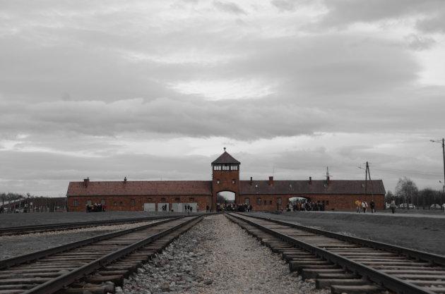 Auschwitz (Birkenau)