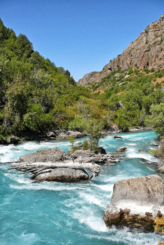 Het nog ongerepte Aksoe Dzjabagly natuurreservaat