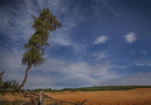 Rode zandduinen bij Mui Ne