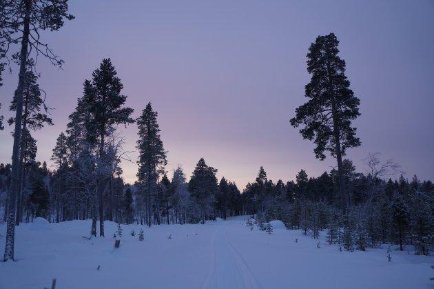 Prachtig Fins Lapland