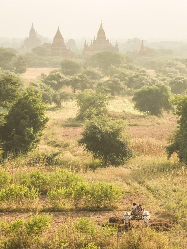 Het lokale leven in Bagan
