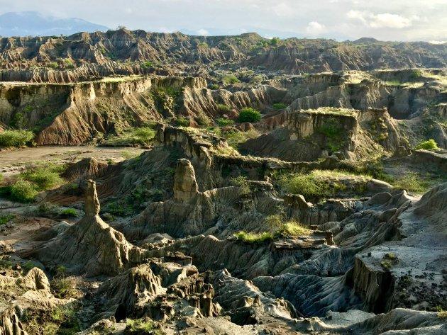 De grijsgroene Tatacoa woestijn