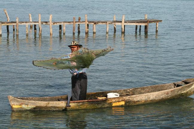 Sardine visser