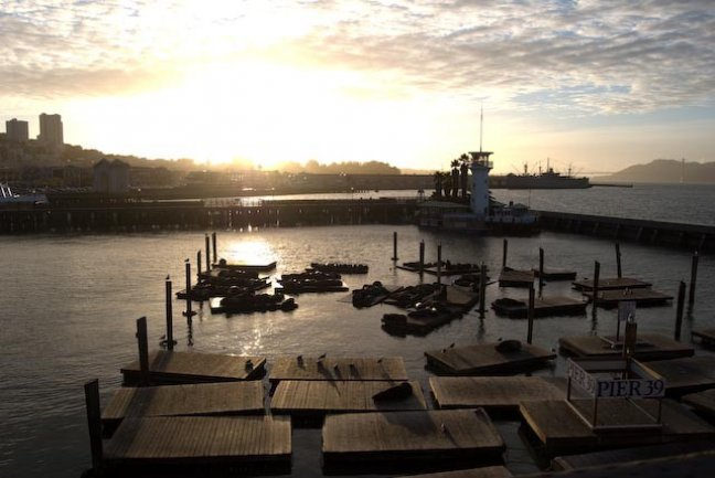 Pier 39 at sunset