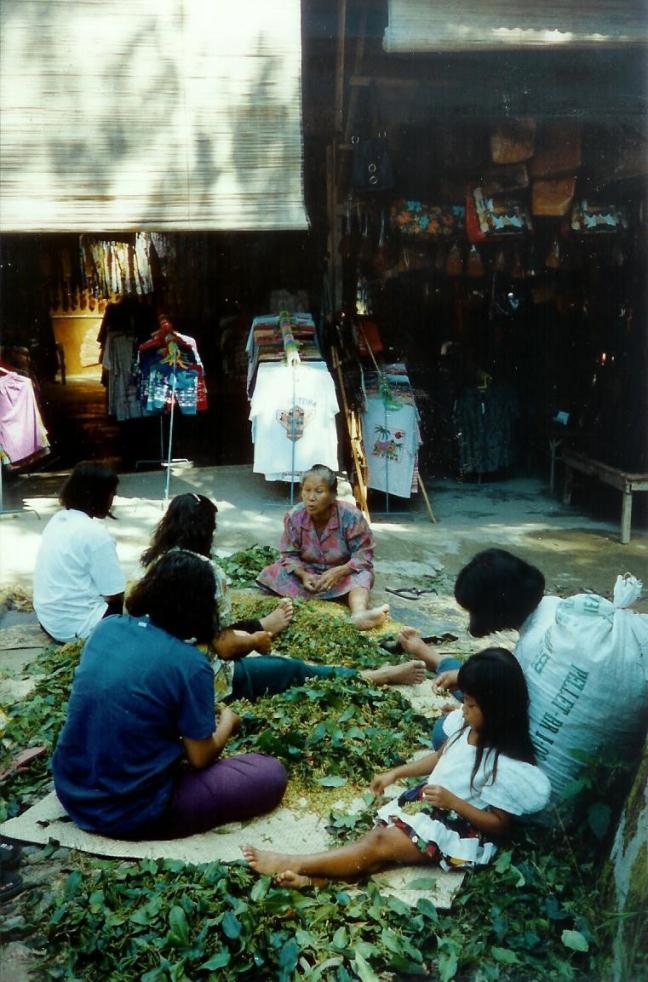 1997: Java, Semarang, kruidnagels pellen.