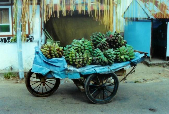 1997: Sumatra: bananentransport.