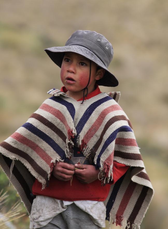 stoere boy op de Chimborazo