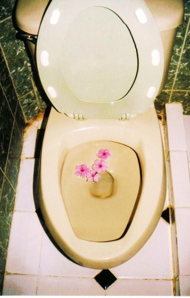WC opleuken ?