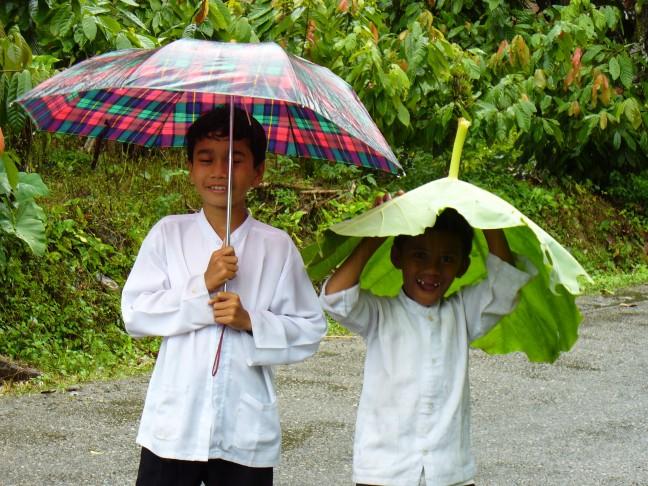 Alternatieve paraplu