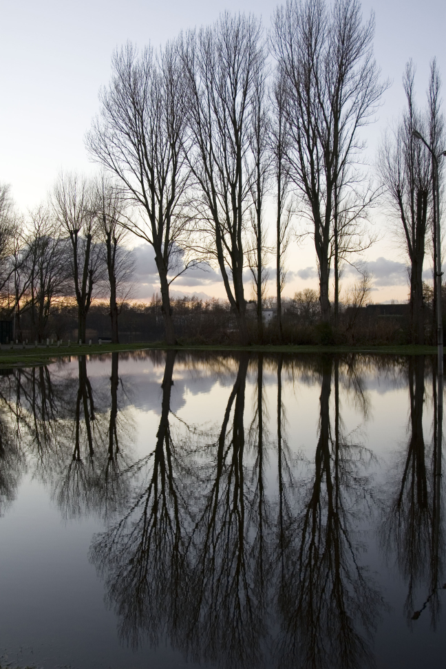 Mooie spiegeling