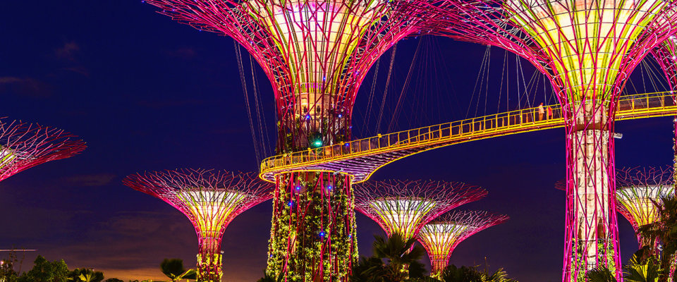Gardens by the bay image