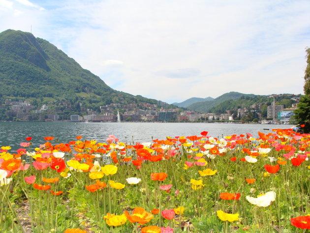 Intro foto Lugano