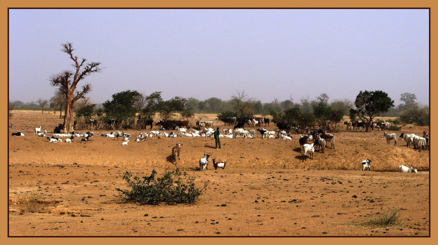 Intro foto Ouahigouya