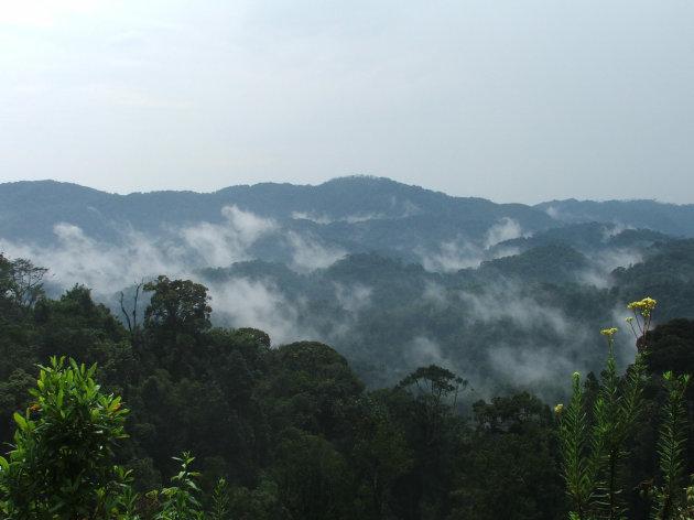Intro foto Butare